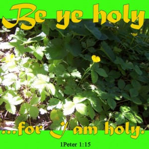 Be ye holy, says God.