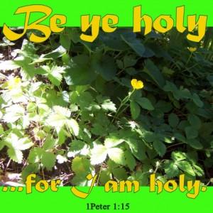 Be ye holy, says God.